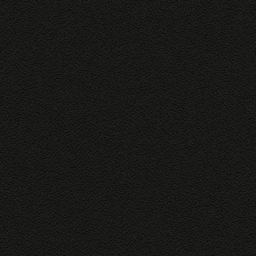 FBSA-009-negru